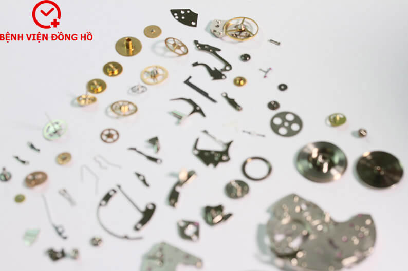 IMG 1422 copy - Căn Chỉnh Nhanh Chậm Đồng Hồ Cơ | Bệnh Viện Đồng Hồ